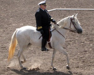 Bill riding Apple Pie de Miami (Andante) in Military Equitation
