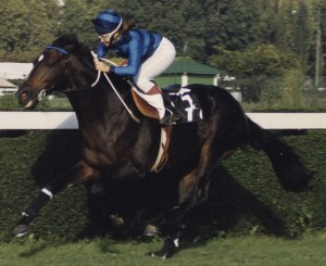 Racing with Maglogarth 1991