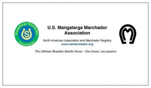 President's Letter to Members   U S  Mangalarga Marchador