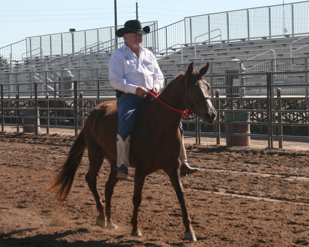 Sweet Flying Oaks Athena with owner Rick Schatz riding bareback.